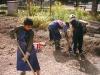 rozšířená školní zahrada